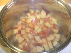 Topfentsaftung Äpfel gekocht unpüriert