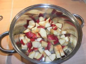 Topfentsaftung Äpfel mit Wasser im Topf ungekocht